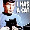 Spok has a cat