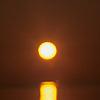 solarwinter userpic