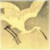 egret | the prophet