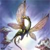 wings, dragon, fantasy