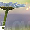 ephemerealm userpic