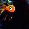 Caph: Disney: Fish!
