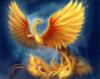 жар-птиця