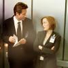 Nerca Beyul: X-Files - Scully no likey