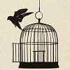 Nature - bird & cage
