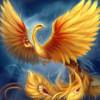moveon_phoenix