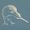 pic kiwi