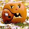 Robyn Goodfellow: cannibal pumpkin