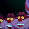 Brooke: Cheshire Cat