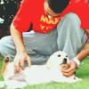 Marie: Bushido - Dogs