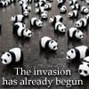 high_striker: Misc (Panda Invasion!) D: