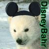 Ursula Messerschmitt: Bear-DisneyBahr