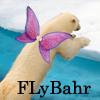 Ursula Messerschmitt: Bear-FLyBahr