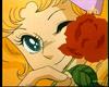Кэнди с розой