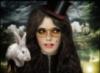 и белый кролик