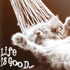 Life is Good by sallymn