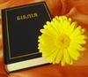 християнська читанка