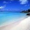 beach, tropical