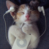 Babydracky: Kitty Ipod