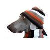 пес в шаппке