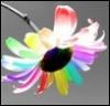 goldflicker userpic