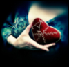 Сердце факультета