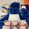 alwaysashipper: cookie monster 2
