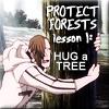 DGM - Hug a tree