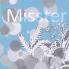 Misster Cackles