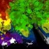 ~: rainbow