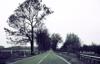 raido_road userpic