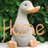 The Duck's Asylum
