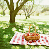 [stock] summer picnic