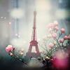 Cecilia: Eiffeltower