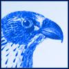 featherandfang userpic