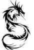 dragon5174
