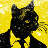 kitty: mr kitty