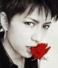 [Gackt] rose