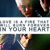 spike/xander (love is a fire)