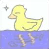 Sandreen: duck treading water