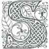 кельтская S