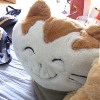 cat_the_pillow userpic