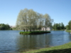 schneefink: St. Petersburg Garten