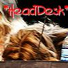 Mary~ Headdesk