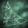 liantesweb userpic