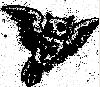 blind_owl userpic
