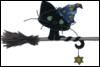 black witch cat