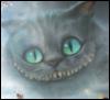 tais3izz: чеширский кот