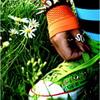 la_locura_verde userpic