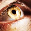 Merlin [gold eye]